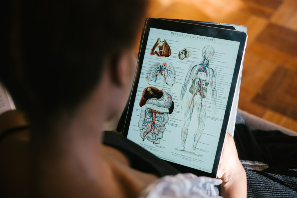 Student Looking at Anatomy Diagram